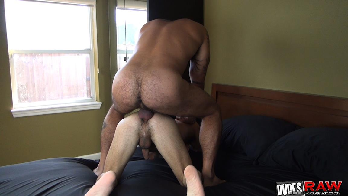 Dudes Raw Alessio Romero and Nick Cross Hairy Latino Muscle Daddy Barebacking Amateur Gay Porn 22 Hairy Muscle Daddy Alessio Romero Barebacking Nick Cross